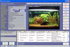 AquariumScreen1