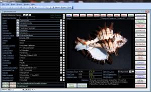 ShellScreen1